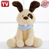 Electric Peek A Boo DOG Play Music Plush Soft  Educational Toy