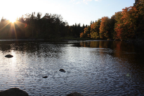 The Margaree River in Fall
