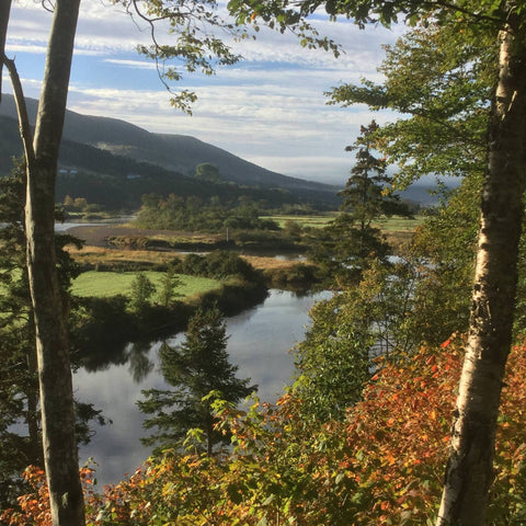 View of Margaree River, mountains, fields