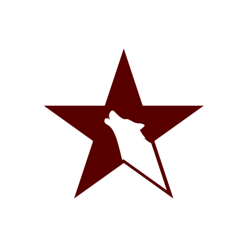 Lone Conservative Star Sticker