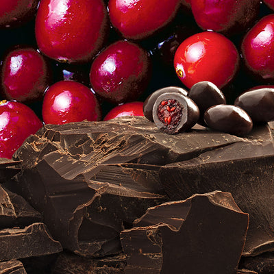 Dark Chocolate covered whole cranberry