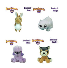 Surprizamals Series 5 - 4 Pack Mystery Ball with Plush Toy