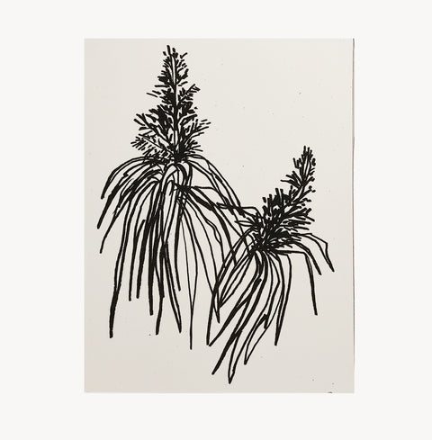 Botanical Art Print by Wilde House Paper | H. SMITH