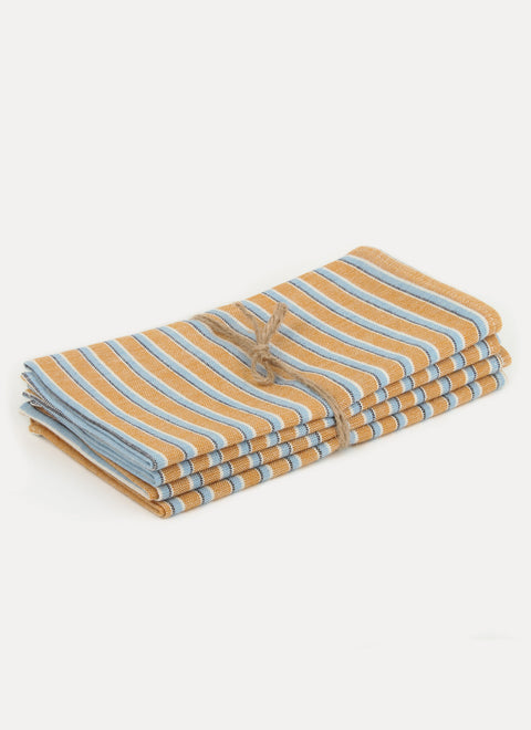 Terra Goldenrod Napkin Set by Heather Taylor Home