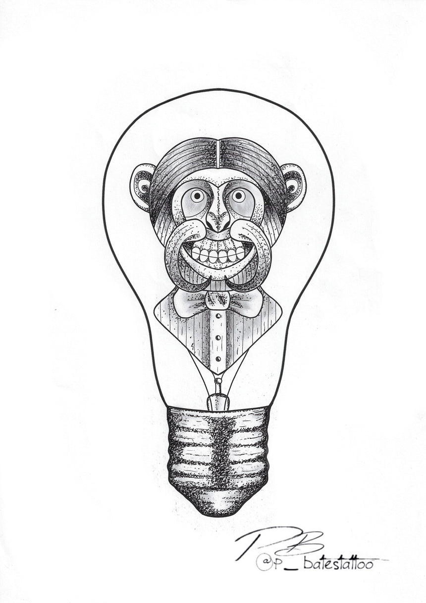 The Monkey Bulb by Pat Bates