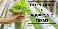 Definitions of Aquaponic Terms