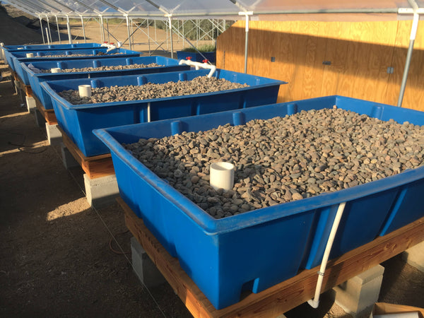 Grow Media in an Aquaponics System