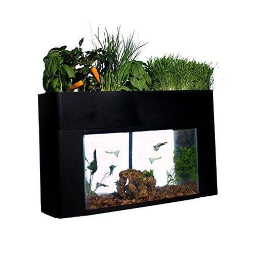 AquaSprouts Garden - Aquaponics For Life