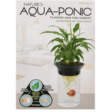 Penn-Plax Aquaponic Betta Fish Tank Planter and Fish Habitat (.5 Gallon) - Aquaponics For Life