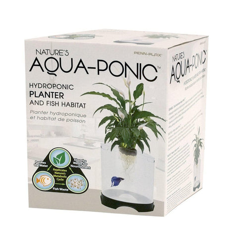 Penn-Plax Aquaponic Betta Fish Tank (1.4 Gallon) - Aquaponics For Life