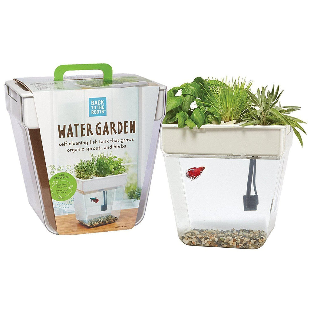Back to the Roots Water Garden, Mini Aquaponic Ecosystem - Aquaponics For Life