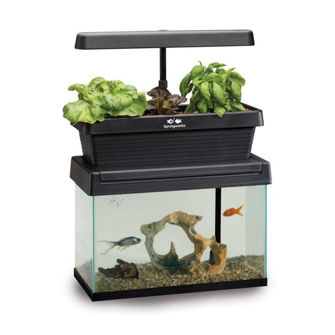 Springworks Microfarm Aquarium Topper Aquaponic System - Aquaponics For Life