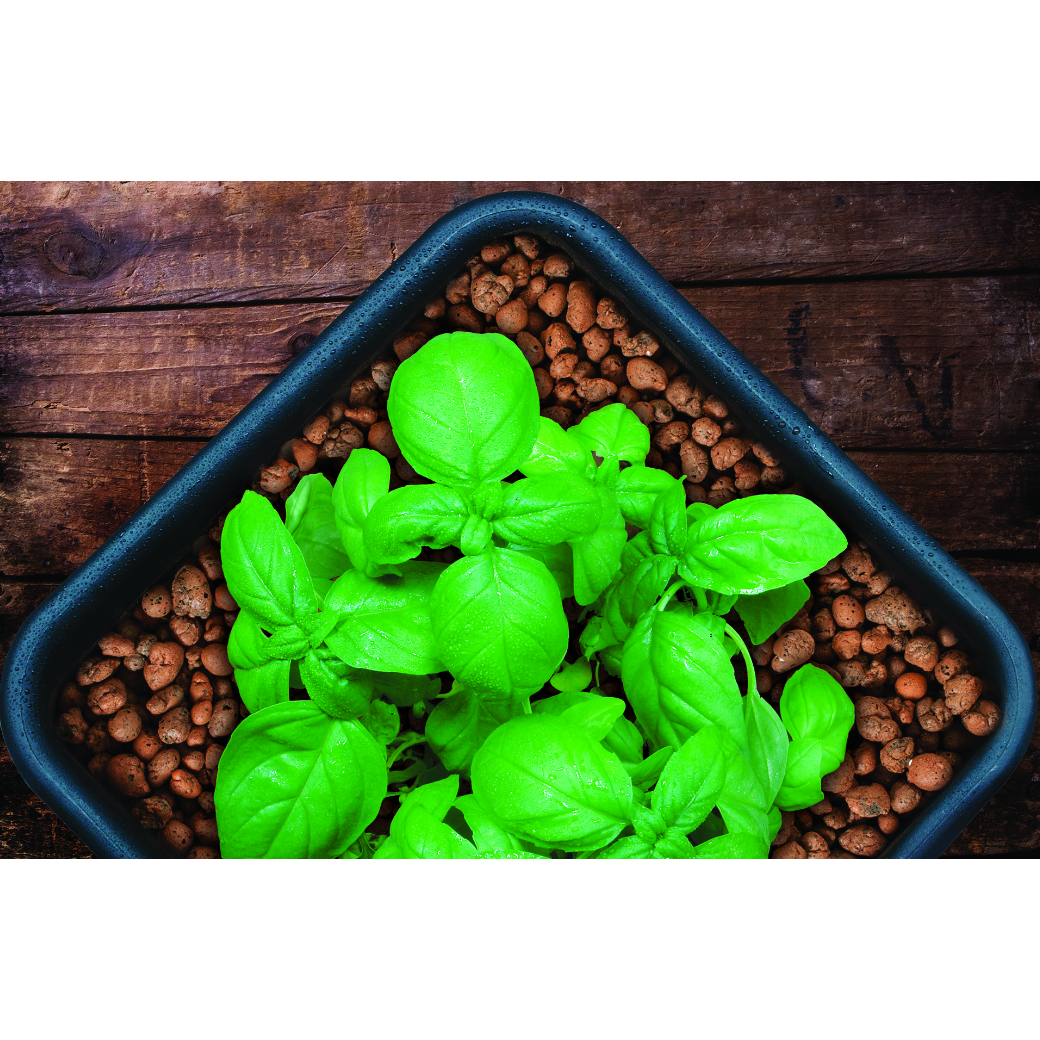 GROW!T Clay Pebbles, Grow Media 4 mm-16 mm, 40 L - Aquaponics For Life