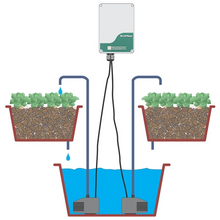 Load image into Gallery viewer, IX100 – Sequencing Timer – AC Version - Aquaponics For Life