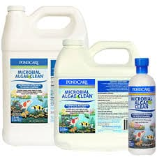 Microbial Algae Clean – 16 oz - Aquaponics For Life
