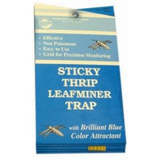 Blue Sticky Traps for Thrip and Leafminer – 5 Pack - Aquaponics For Life