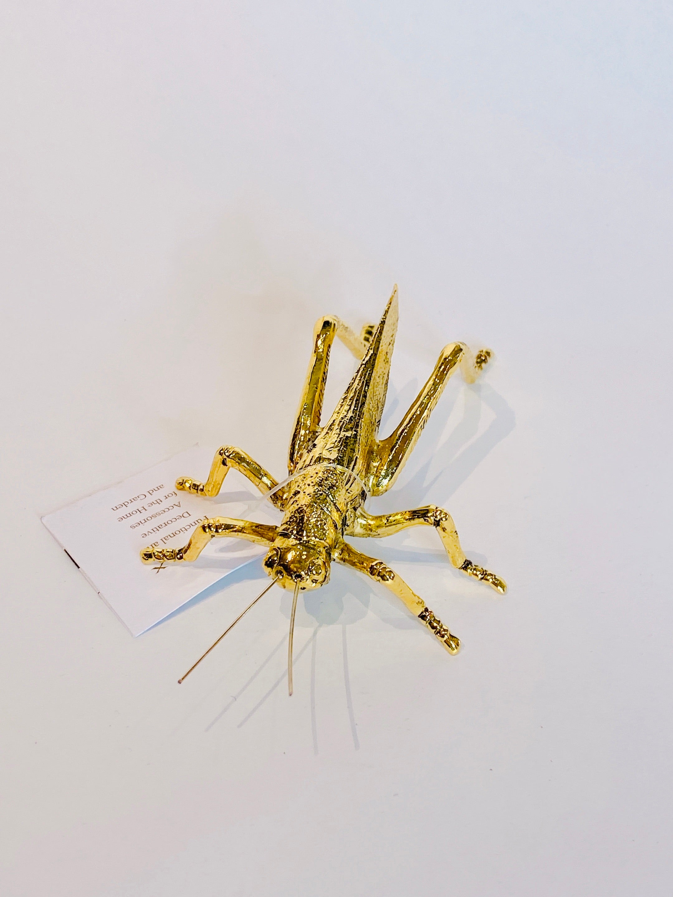 Gold Insect