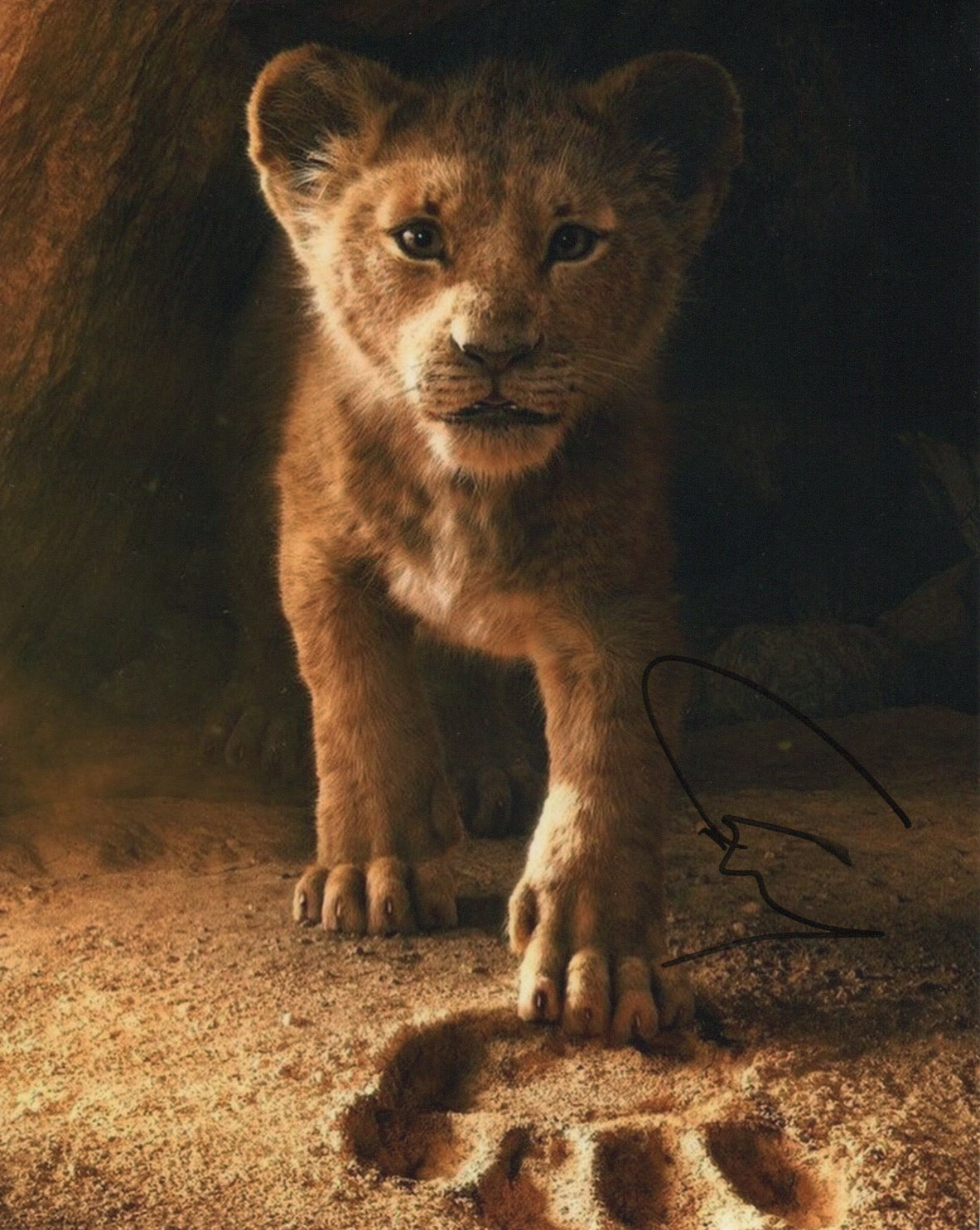 Chiwetel Ejiofor Lion King Disney Autograph 8x10 Photo Signed - Outlaw Hobbies Authentic Autographs
