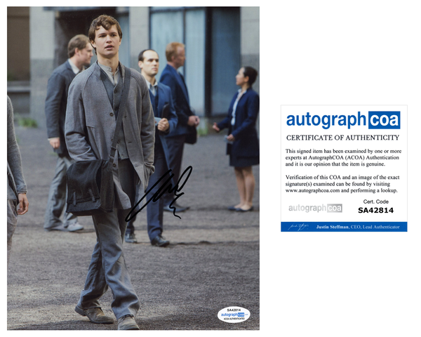 Ansel Elgort Fault in Our Stars Signed Autograph 8x10 Photo ACOA #6