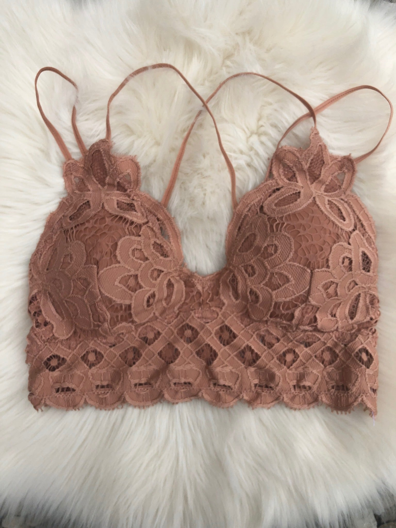 Bewitched Scalloped Bralette- Multiple Options