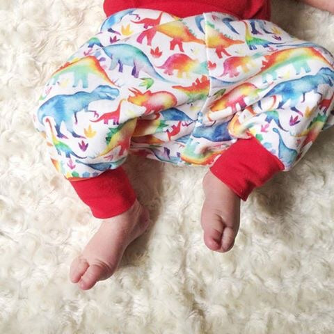 Rainbow Dinosaur Organic Knit Pants - Little Green Bird