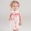 Beautiful Summer Baby Girl's Dress