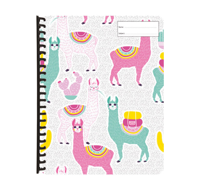 Display Folder - Drama Llama