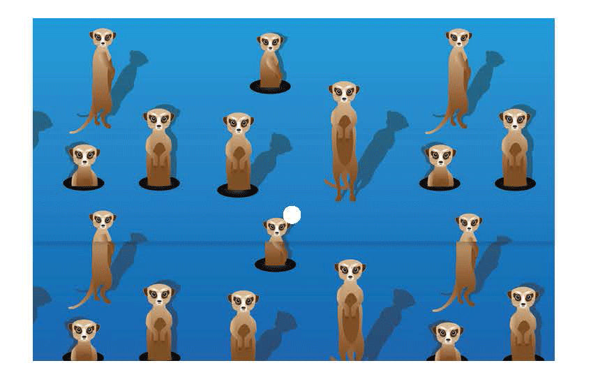Document Wallet - Meerkats