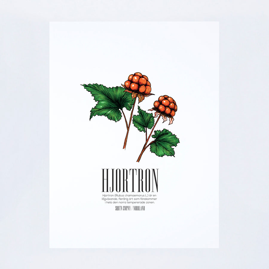 POSTER HJORTRON