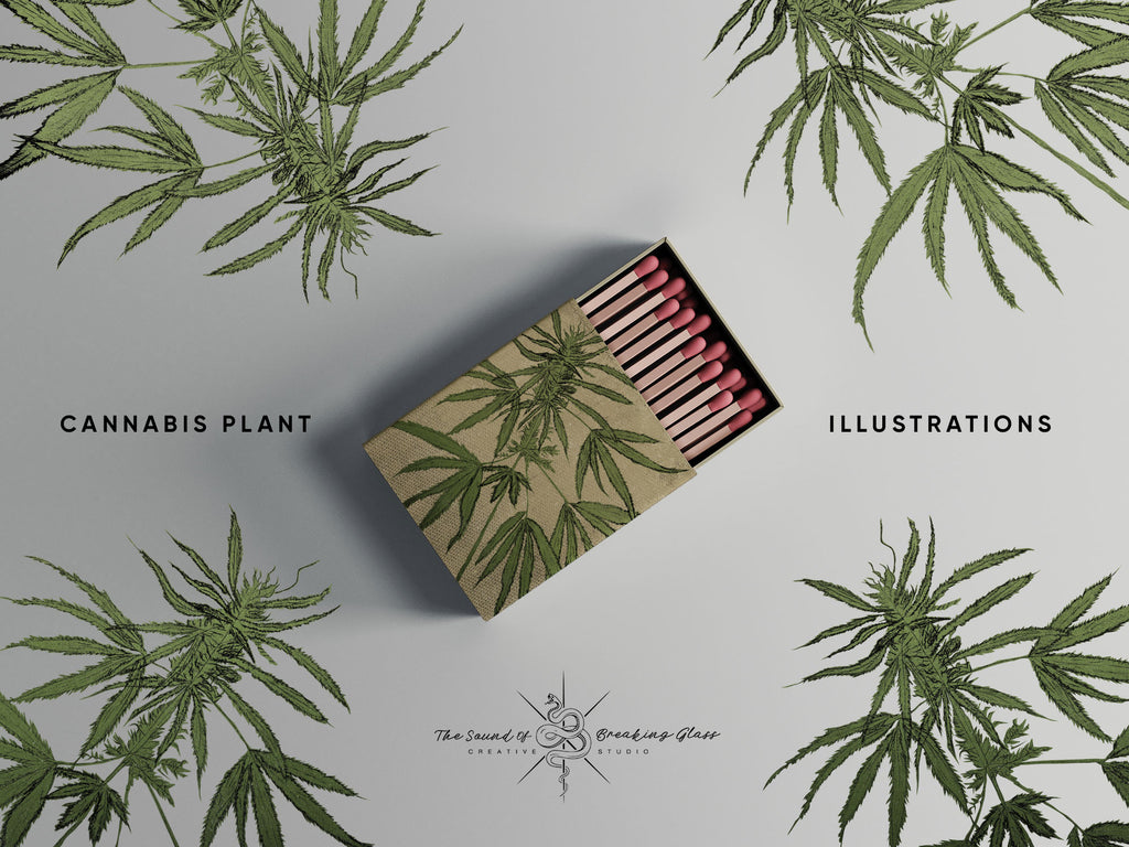 Hand Drawn Marijuana Cannabis Hemp Plant Illustrations CBD