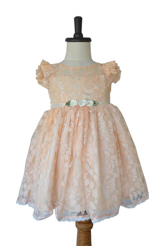 BabyGirls' Fluttersleeve Peach Lace Dress