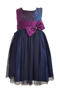 NavyBlue and Purple Net frock