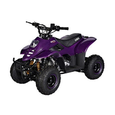 GMX Ripper 110cc Sports Quad Bike - Purple
