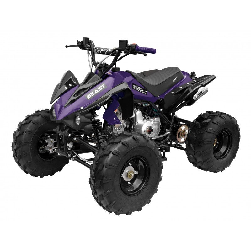 GMX The Beast 125cc Sports Quad Bike - Purple