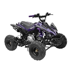 GMX The Beast 110cc Sports Quad Bike - Purple