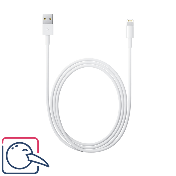Apple Original Lightning to USB Cable (1m)
