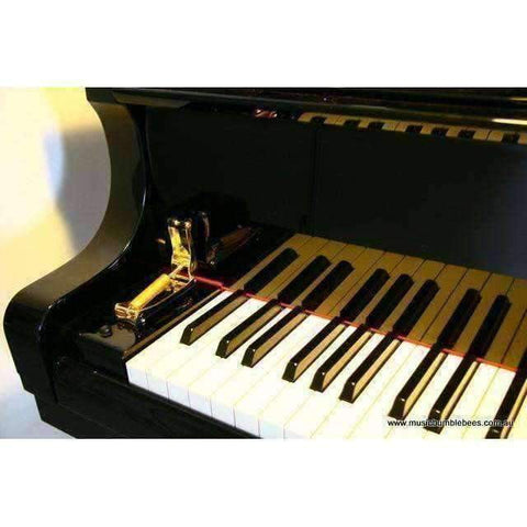 Image of Piano Slow Fall Device (External) Featured Products,Products,Music Gifts - Music Bumblebees