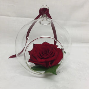 Rose in a Bubble