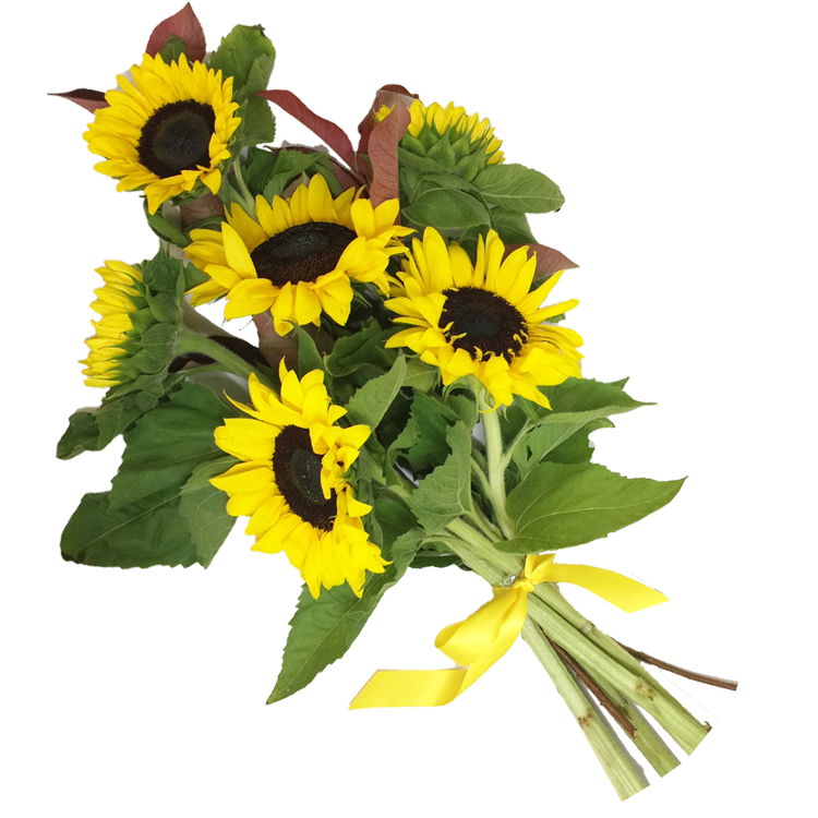 Sunflower Hand-tied Bouquet