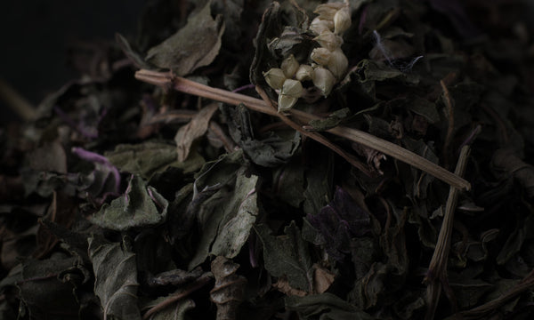 Peppermint Leaf Herbal Infusion
