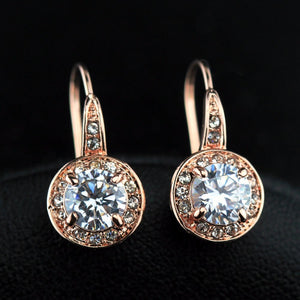 Jewelry Rose Gold 1ct Round CZ Stone Hook Earrings High quality jewelry wholesale (CRE-755 52# AB)