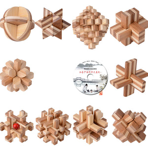 10PCS/LOT Bamboo With CD Toys Classic IQ 3D Wooden Interlocking Burr Puzzles Mind Brain