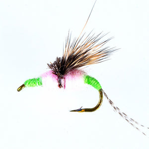 Piscifun 40pcs Wet Flies W/ Box