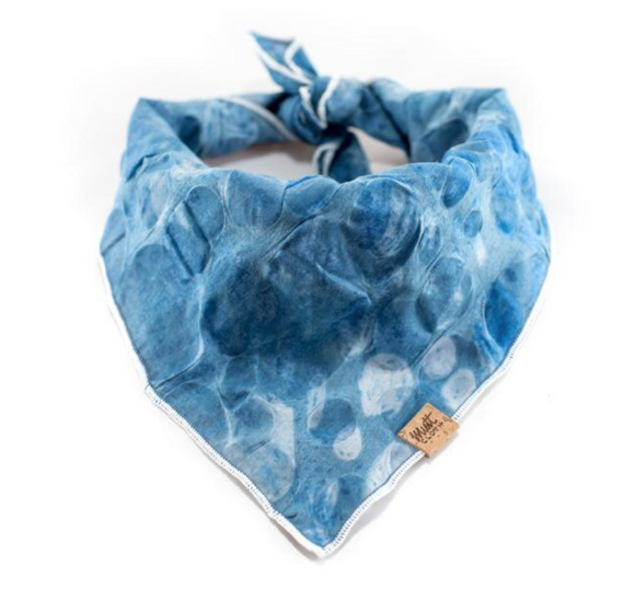 Abraham Lake - Mutt Cloth Dog Bandana