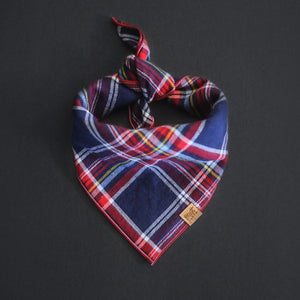 Apple Cider - Mutt Cloth Dog Bandana