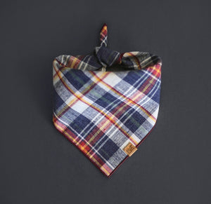 Homeward - Mutt Cloth Dog Bandana