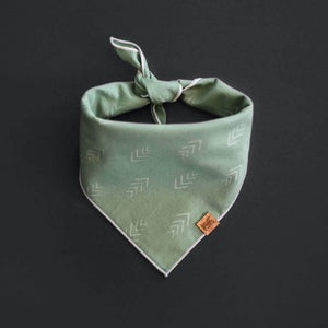 Lichen - Mutt Cloth Dog Bandana