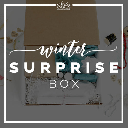 Winter Surprise Box
