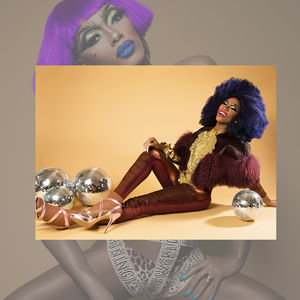 "The Vixen ""Editorial"" Holiday Bundle (70% off!)"