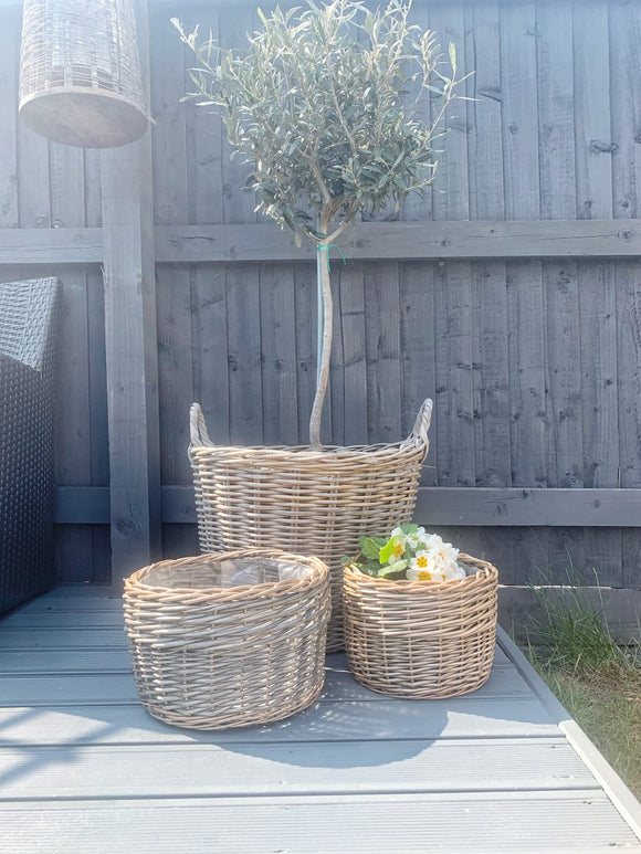 PRE - ORDER AUGUST - Willow Planter - 3 Sizes Available